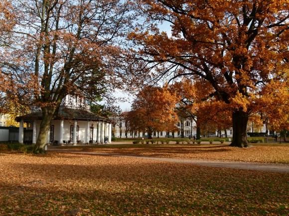 Weißer Pavillon auf dem herbstlichen Kamp (c) FRank Koebsch (3)