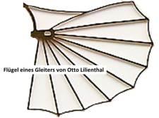Flügel eines Gleiters von Otto Lilienthal