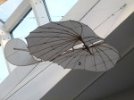 Flugapparate im Otto Lilienthal Museum (c) Frank Koebsch 4