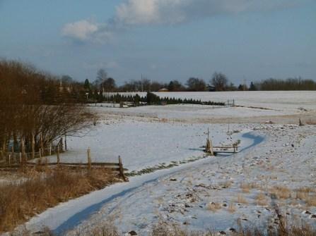 Winter in Sanitz (c) Frank Koebsch