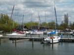 Schweriner See beim Werderhof (c) FRank Koebsch (6)