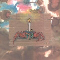 Sternzeichen Krebs (c) Kerstin Mempel