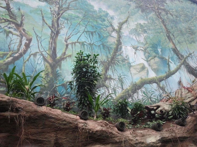 Wandmalerien Im Chinaski : Moved permanently
