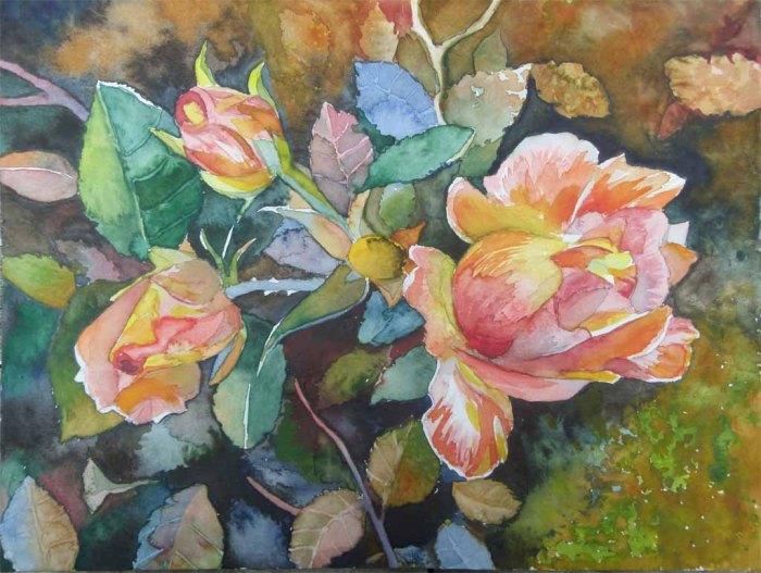 Herbstfeuer (c) ein Rosen Aquarell von Frank Koebsch