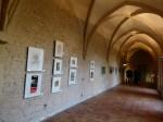 Grafiken zum 20. Jubiläum der OZ Kunstbörse (c) Frank Koebsch