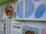 Sternzeichen und Sternkarten (c) Frank Koebsch