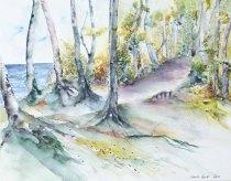auf der Steilküste (c) Aquarell von Hanka Koebsch