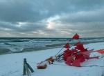rotbeflaggte Spieren im Schnee (c) Frank Koebsch