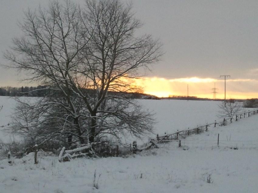 Winter in Mecklenburg Vorpommern (c) Frank Koebsch 1