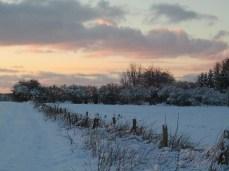 Winter in Mecklenburg Vorpommern (c) Frank Koebsch 2