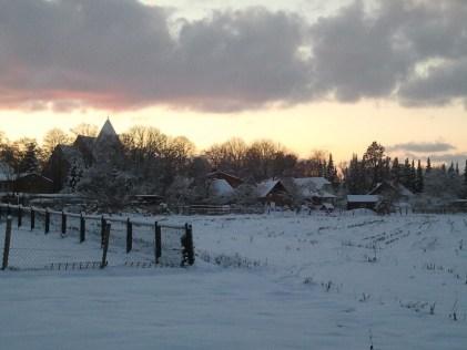 Winter in Sanitz (c) FRank Koebsch 1