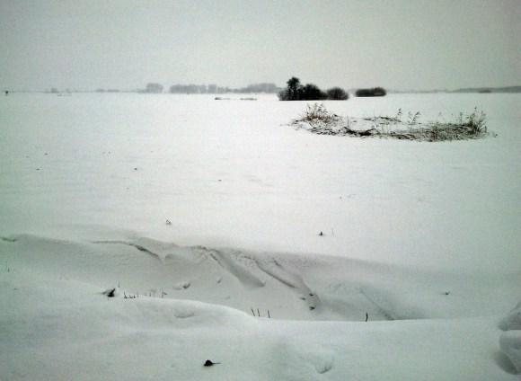 Winterlandschaft im platten Land (c) Frank Koebsch