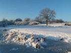 wunderschöne Winterlandschaft (c) Frank Koebsch