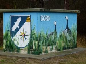 bemalte Trafostation Born - Bäderstr. (c) Frank Koebsch (1)