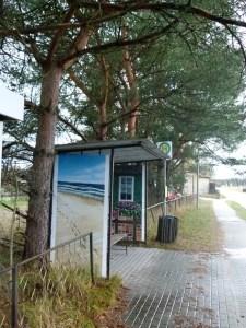 Bushaltestelle auf dem Darß (c) FRank Koebsch (1)
