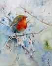 Noch kein Frühling in Sicht (c) Aquarell mit Rotkehlchen von Hanka Koebsch