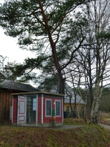 Trafostation in Wieck - Carvelhorst (c) FRank Koebsch (1)