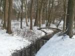 Brücke im winterlichen Park (c) FRank Koebsch