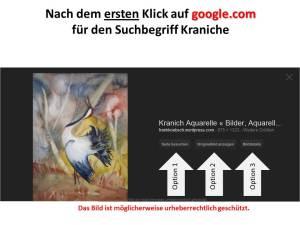 Google.com Bildersuche für den Suchbegriff Kranich (3)