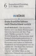 Erste Kraniche kehren nach Deustchland zurück - OZ 2013 03 02