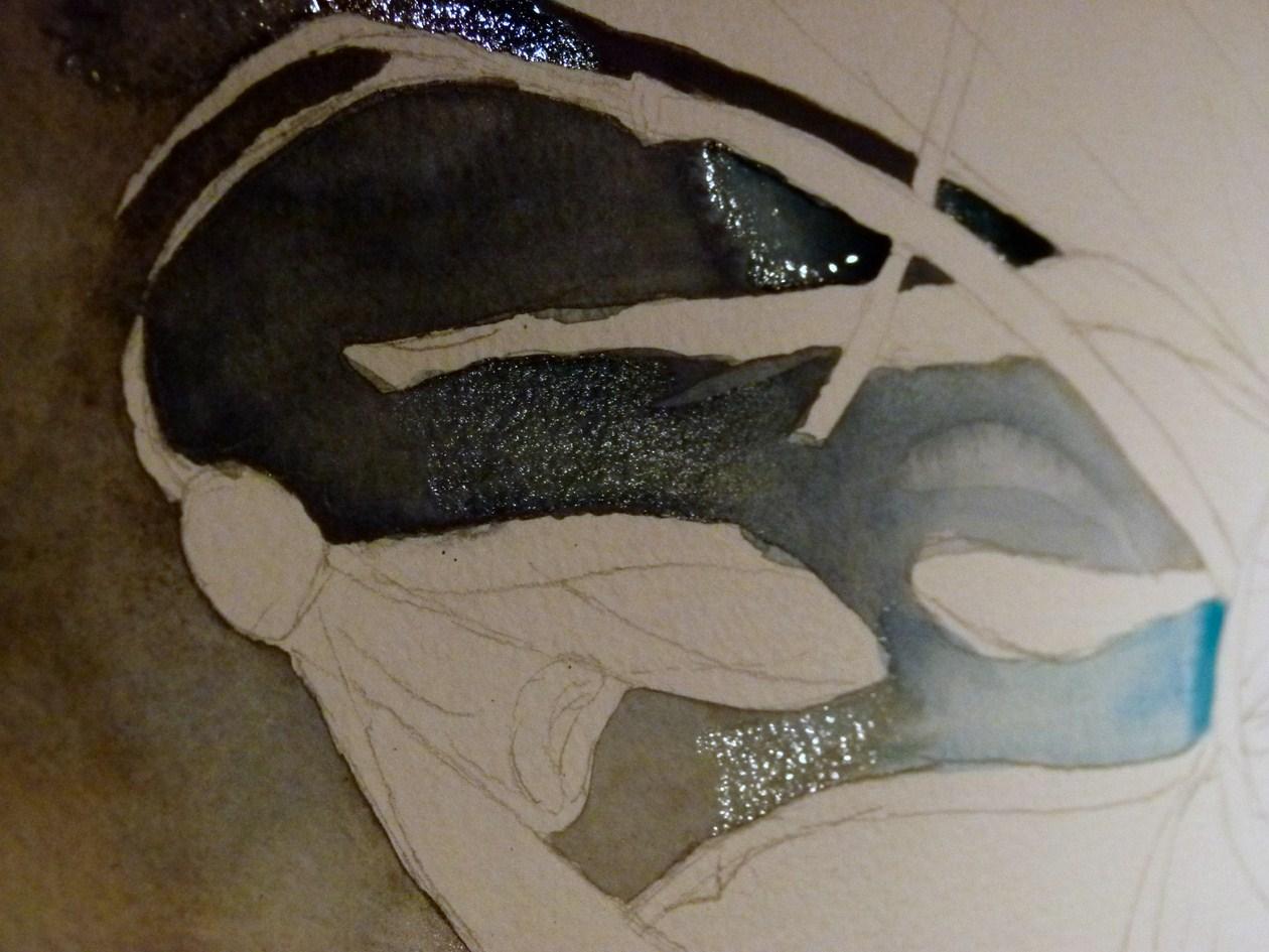 schneegl ckchen aquarell von frank koebsch bilder. Black Bedroom Furniture Sets. Home Design Ideas