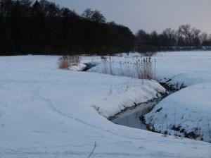 Winterliche Wiese (c) Frank Koebsch (1)