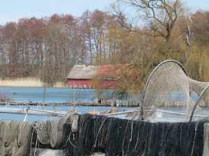 Fischerei am Schweriner See (c) Frank Koebsch