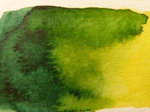 Vandyke grün W537 und Permanent, gelbes Licht W522 (c) Frank Koebsch