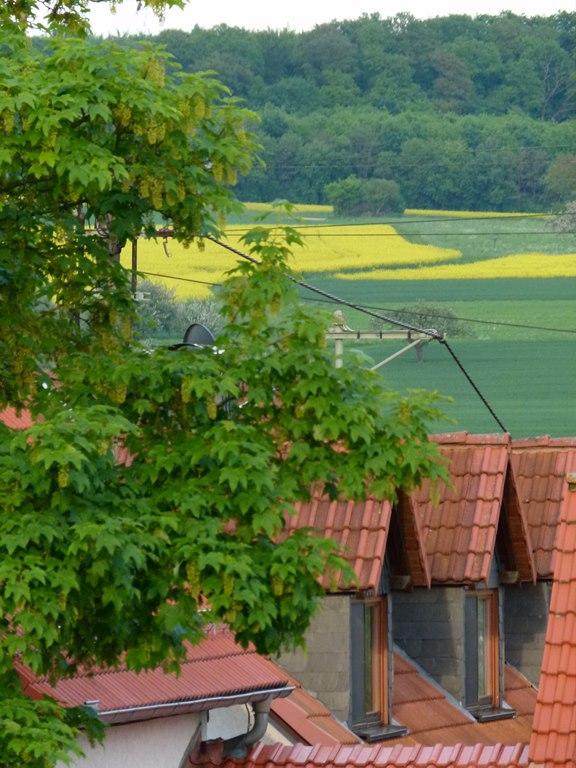Blick über die Dächer von Heftrich (c) Frank Koebsch 1