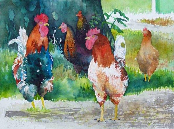 ein bunter Hühnerhof (c) Aquarell von Frank Koebsch