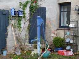 Schnappschüsse aus dem Garten der alten Büdnerei (3)