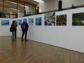 Ausstellung 125 Jahre National GEOGRAPHICS in Zingst (c) Frank Koebsch (1)
