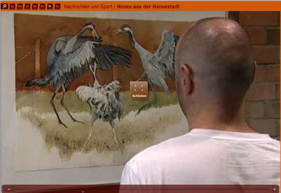 Kraniche faszinieren (c) tv.rostock