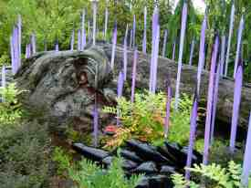 Seattle - Garden and Glass from Chihuly (c) Frank Koebsch (18)