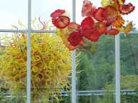 Seattle - Glass from Chihuly (c) Frank Koebsch (46)