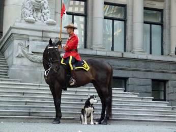 Vancouver - Berittener Mounti mit Hund vor der Art Gallery (c) FRank Koebsch (5)