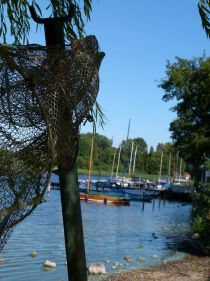 mpressionen vom Schaalsee (c) FRank Koebsch (3)