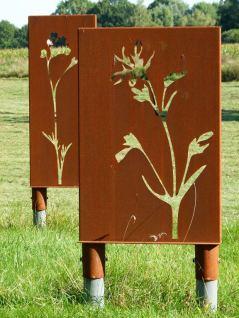 Symbole für die Feuchtwiesen am Schaalsee (c) FRank Koebsch (3)