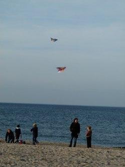Drachen steigen lassen am Kühlungsborner Strand (c) Frank Koebsch (2)