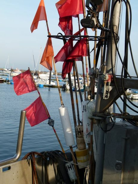 Fischerboote im Kühlungsborner Bootshafen (c) FRank Koebsch (1)
