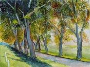 Herbst im Land der Alleen (c) Aquarell von FRank Koebsch