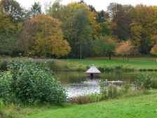 Herbst am Schwanenteich (c) Frank Koebsch (2)