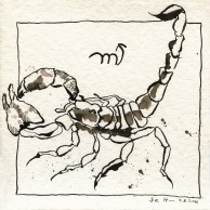 Sternzeichen Skorpion (c) Susanne Haun