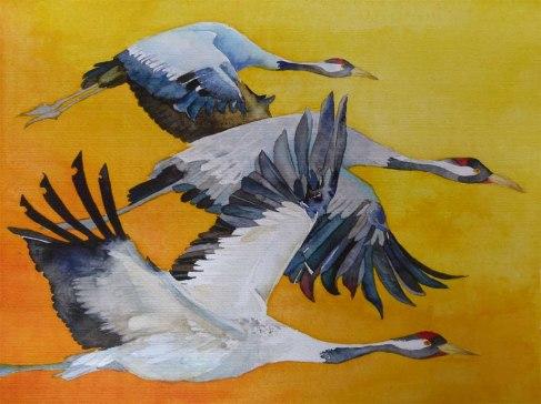 Vögel des Glücks (c) ein Kranich Aquarell von FRank Koebsch
