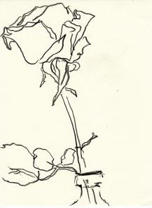 Rose 133 (c) Zeichnung von Martina Wald