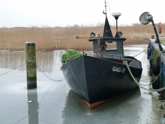 Kutter im Hafen von Gager (c) Frank Koebsch