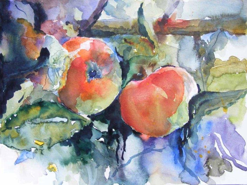 Apfelernte (c) Aquarell von Hanka Koebsch