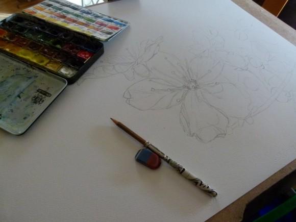Frank Koebsch malt ein Aquarell mit Blüten der Zierkirsche (1)