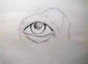 Wie male ich ein Auge in Aquarell - Skizze (c) Frank Koebsch (1)