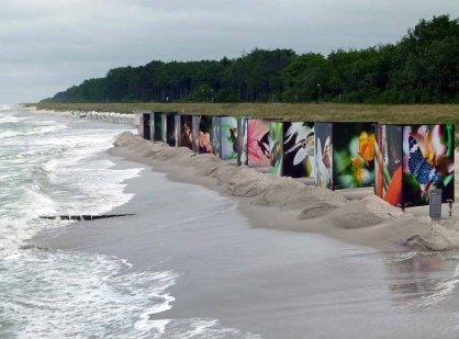 Butterflys im Sturm am Strand von Zingst als Teil des Fotofestivals horizonte (c) Frank Koebsch (3)